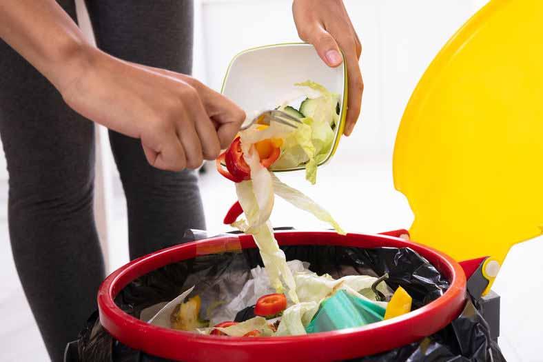 Lebensmittel wegwerfen
